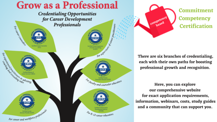 Grow as a Professional